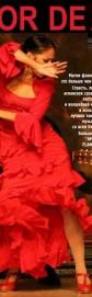 Amor de Flamenco