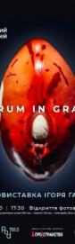 Фотовыставка Игоря Гайдая - «VERUM IN GRANO»